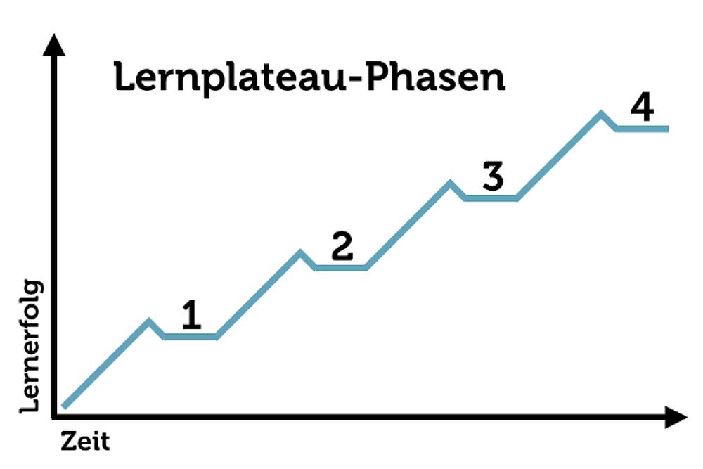 Lernphasen: Lernen von Plateau zu Plateau