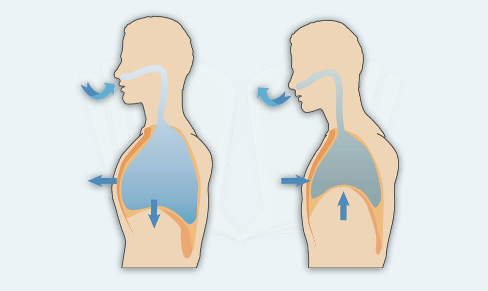 Bauchatmung Brustatmung Atemübung