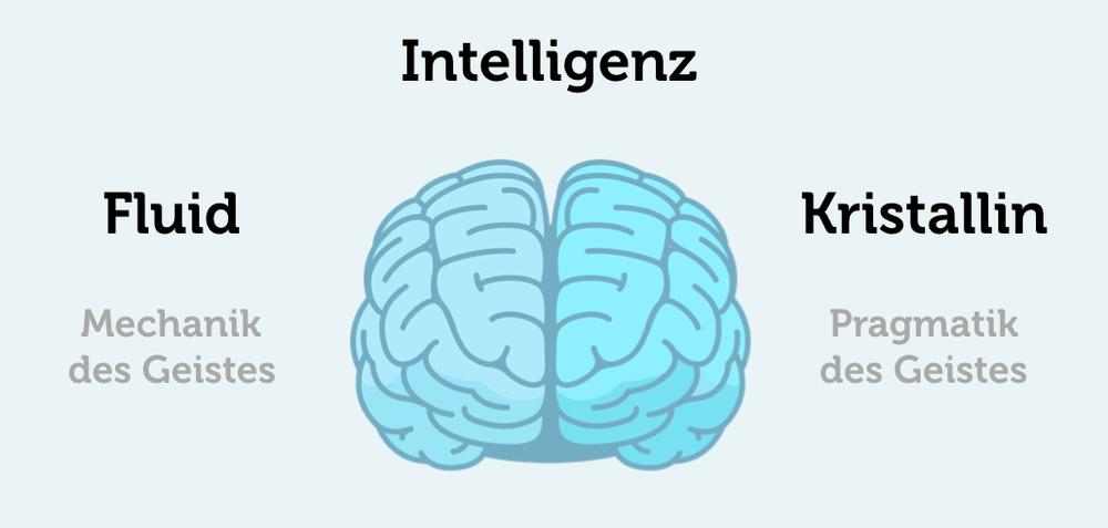 Zweikomponententheorie-Intelligenz-fluide-kristalline