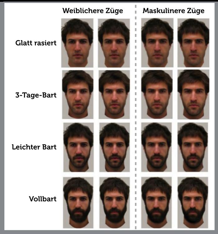 Maenner-mit-Bart-Studie