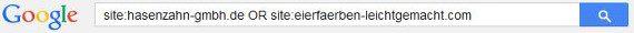 Boolesche Operatoren-Jobsuche-Google-04