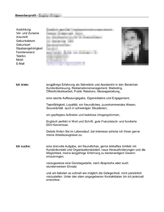 Bewerbungsflyer-Muster-Beispiel-01