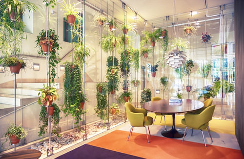 Buerobeflanzung-Konzept-Beispiel