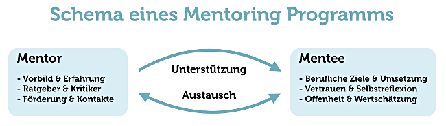 Mentor Programm Definition Grafik