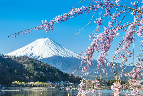 Interkulturelle Kompetenz: Japan