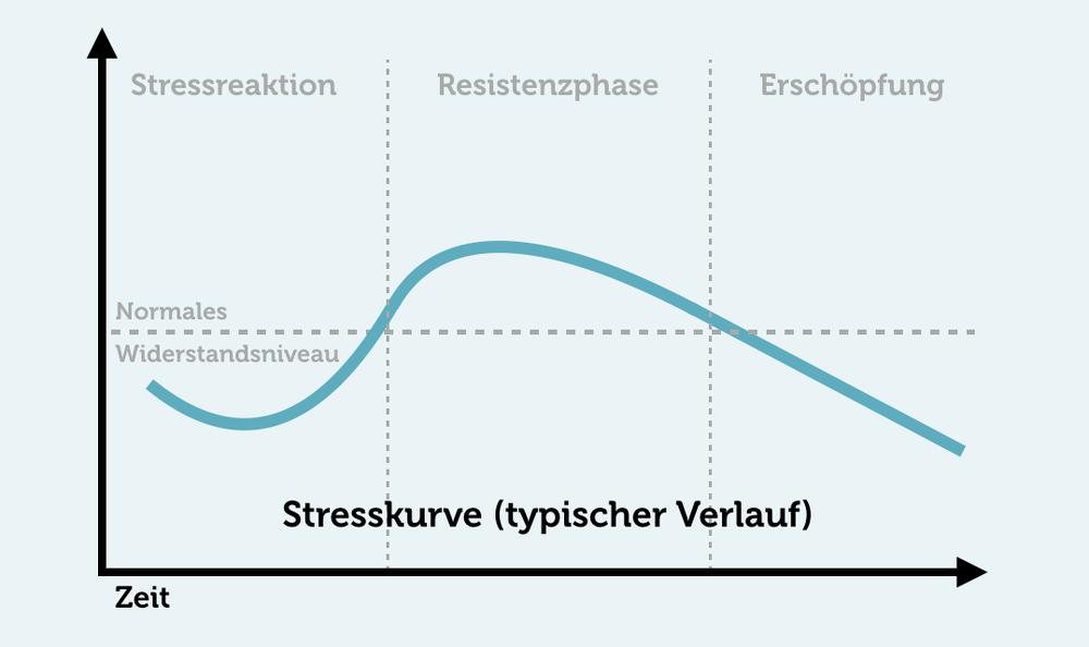 Prüfungsangst bewältigen Stresskurve