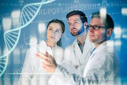 Gen macht Frauen kooperativ