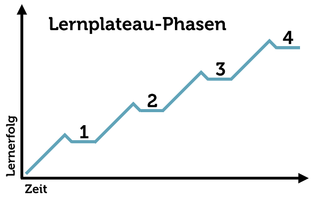 Leonard-Lernphase-Plateaumodell