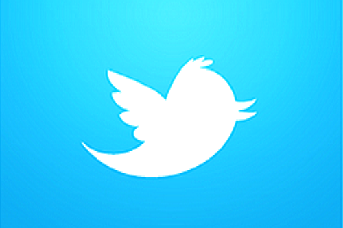 Twitter-Vogel-Icon