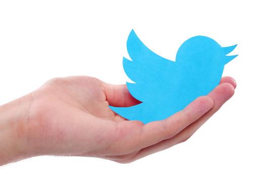 Twitter-Nutzung-Tools-Tipps-Vogle