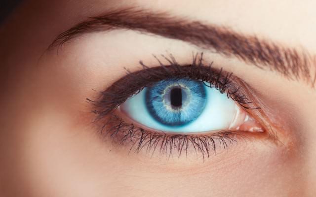 Blickkontakt-Augenkontakt-Dauer