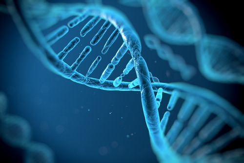 Erfolgs-DNA-Karriereeigenschaften