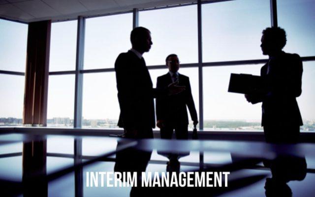 Interim Management Stellenangebote Manager Definition Provider Gehalt Jobs