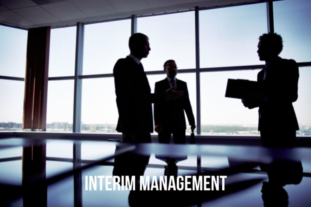 Interim Management Stellenangebote Manager Definition Provider Gehalt Jobs
