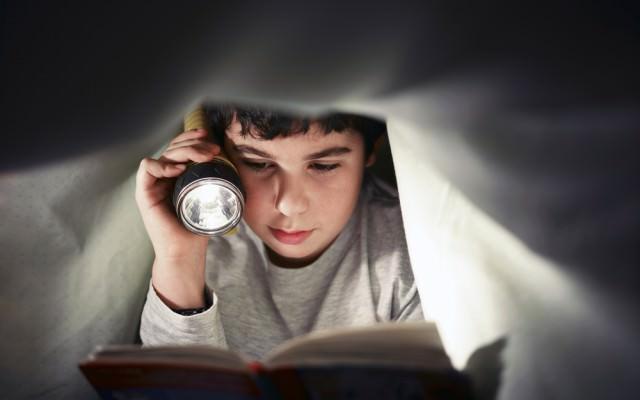 Lesen-Leseratte-Lesegewohnheit-Buch