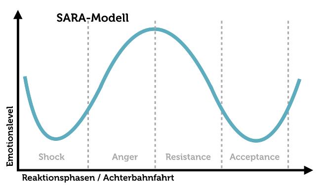 Sara Modell Feedback Reaktionen Grafik