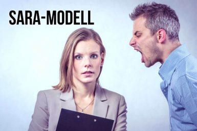 SARA Modell: Die 4 Feedback-Reaktionen