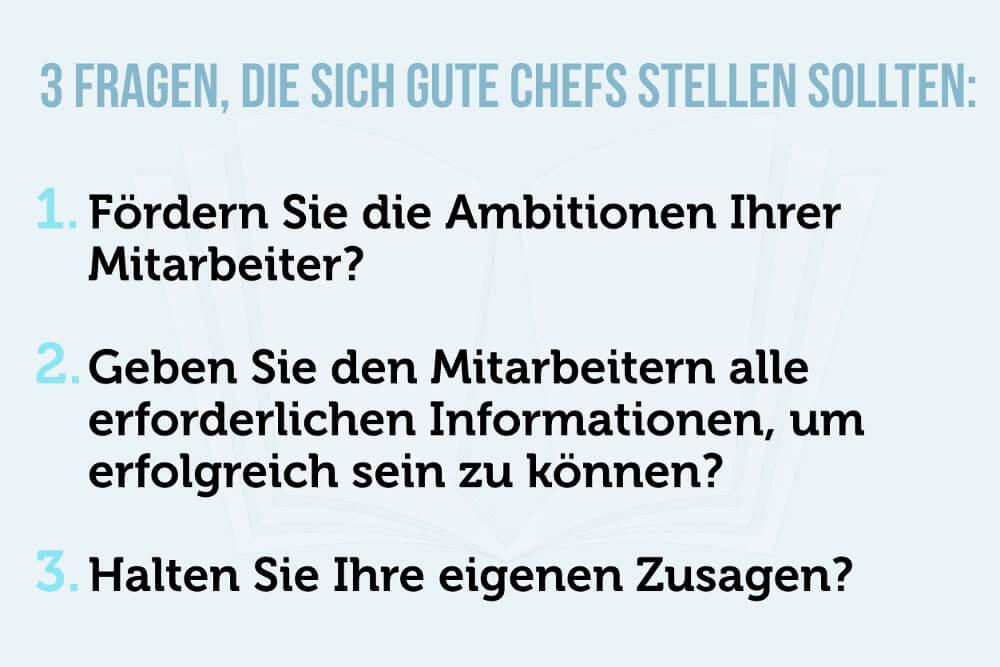 Fuehrungsstil Manager Chef 3 Fragen Grafik