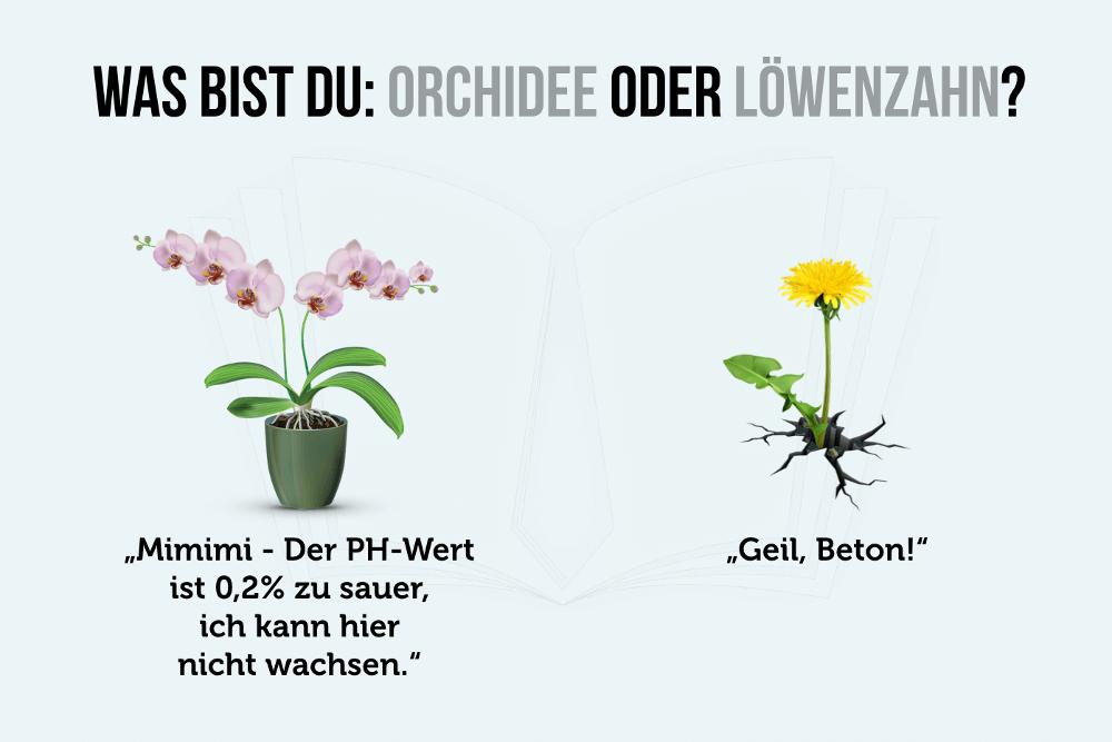 Orchidee oder Loewenzahn Grafik
