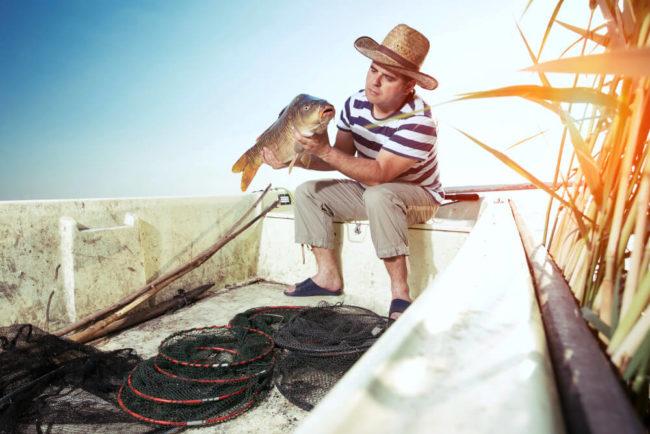 Warum die Parabel über den Fischer und Touristen gefährlich ist