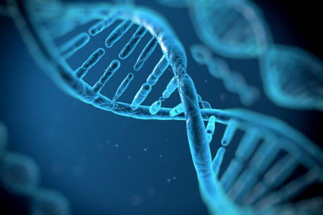 DNA des Erfolgs: Diese 4 Eigenschaften brauchen Sie