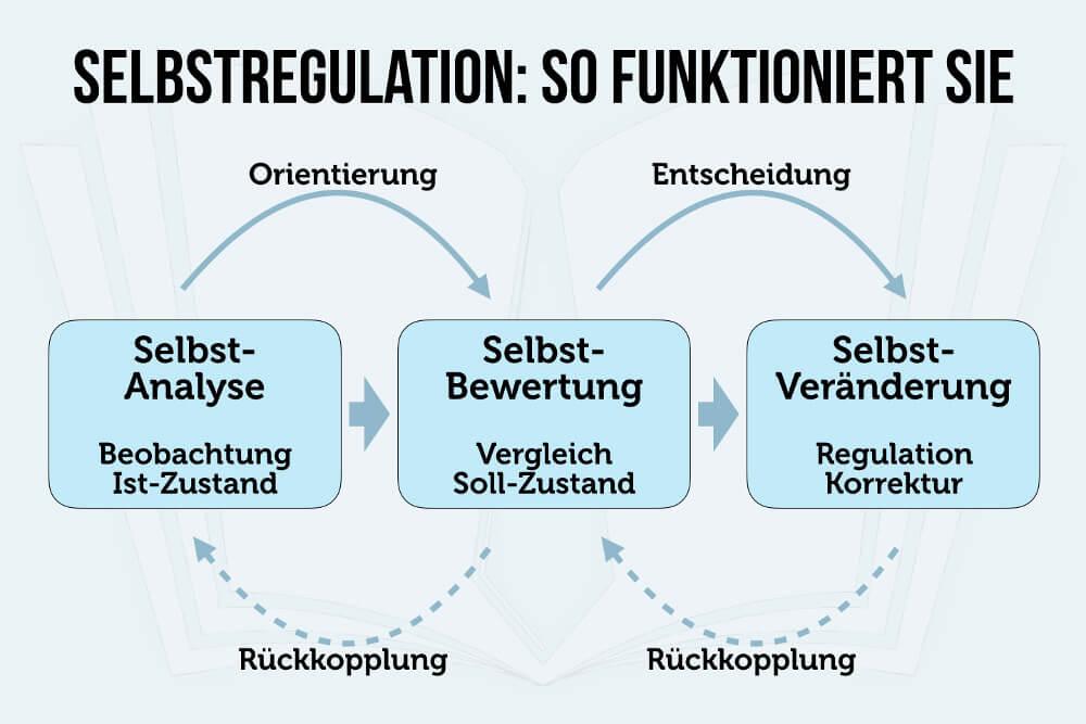 Selbstregulation Beobachten Vergleichen Anpassen Grafik