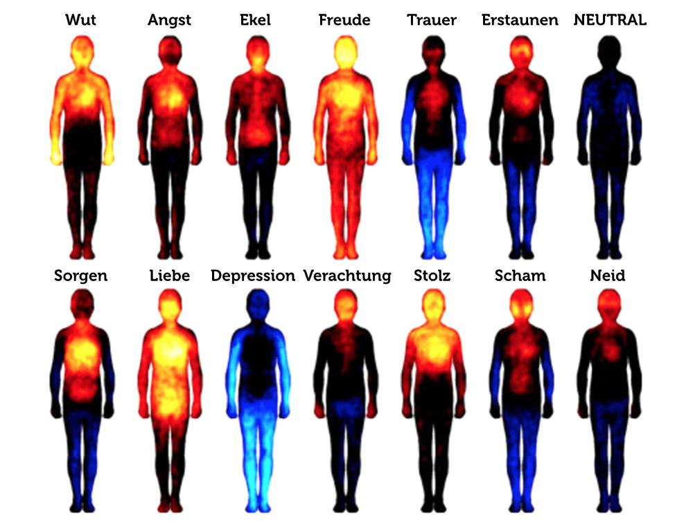 Bauchgefuehl Intuition Emotionen Koerperreaktion Grafik
