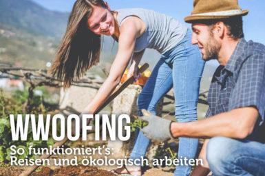 WWOOFing: So funktioniert das Reisen und Arbeiten