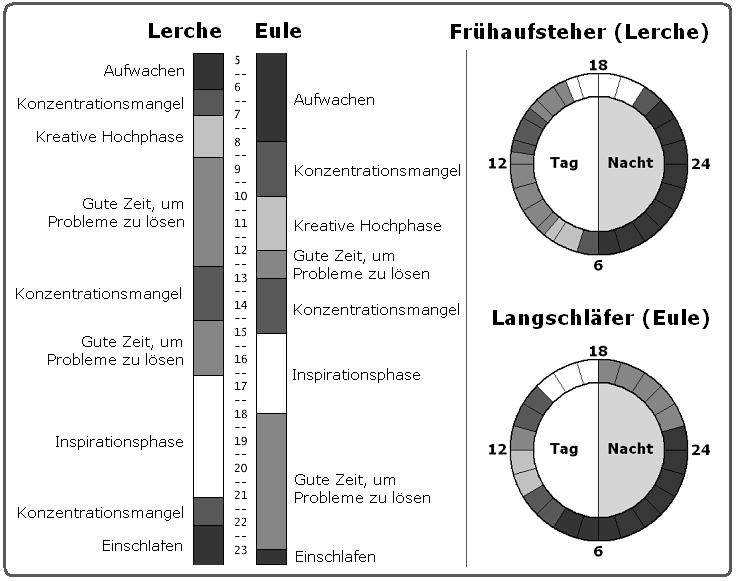 Leistungskurve Tagesverlauf Chronophasen Vergleich Grafik