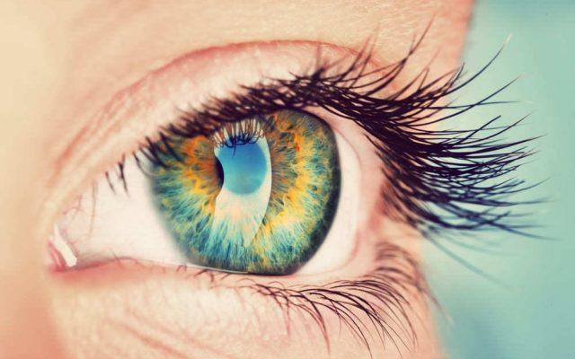 Beobachtungsgabe Bedeutung Definition trainieren englisch synonym Auffassungsgabe