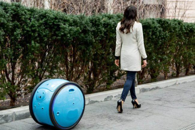 Gita: Der Shopping-Roboter
