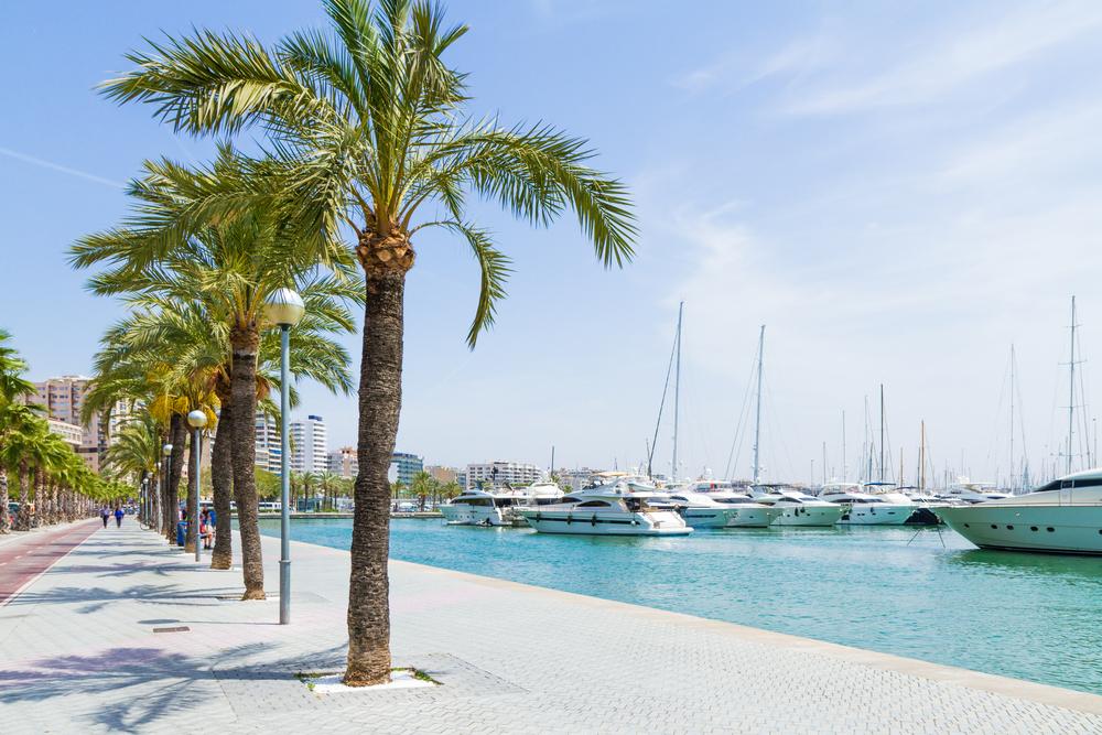 Coworking auf Mallorca Auswandern Spanien Insel Rayaworx Doris Schuppe