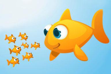 Fischteicheffekt: Lieber der einäugige König unter Blinden