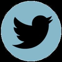 Mediadaten Twitter