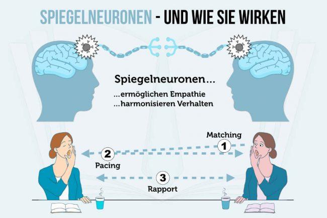 Spiegelneuronen: Schlüssel zu Empathie und Sympathie